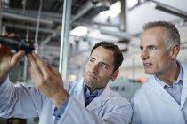 Sucesso adultos cientistas trabalhando no laboratório — Fotografia de Stock