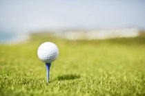 Bola de golfe em T — Fotografia de Stock