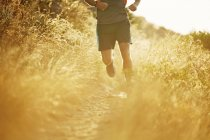 Man running on sunny trail through tall grass — Stockfoto