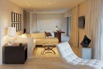 Шезлонг и диван в современной гостиной — стоковое фото