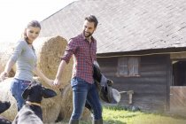 Couple holding hands walking with saddle and dogs outside barn — Stock Photo