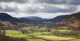 Árvores e pastagens na paisagem rural — Fotografia de Stock