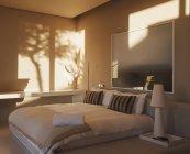 Reflexo das árvores na parede do quarto moderno — Fotografia de Stock
