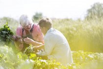 Grandmother and grandson harvesting vegetables in sunny garden — Photo de stock