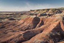 Скам'яніле пофарбовані пустелі Арізона Сполучені Штати ліс Національний парк — стокове фото
