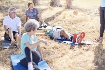 Senior adults practicing yoga in sunny park — Stock Photo