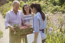 Plant nursery worker helping couple shopping for flowers in sunny garden — Stock Photo