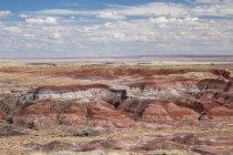 Пофарбовані пустелі скам'яніле ліс Національний парк, штат Арізона, США — стокове фото