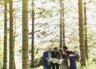 Amigos com mapa caminhadas na floresta — Fotografia de Stock