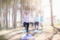 Senior adults practicing yoga in sunny park — Stockfoto