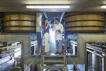 Винороби вивчення вина на платформі в льосі Винзавод — стокове фото