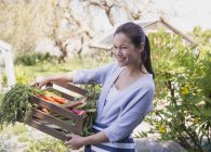 Portrait smiling woman holding crate of fresh harvested vegetables in garden — Stock Photo