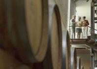 Funcionários da vinícola conversando na plataforma na adega — Fotografia de Stock