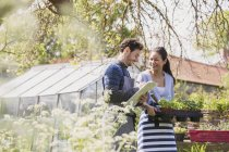 Plant nursery workers with clipboard and potted plants in sunny garden — Stock Photo