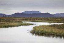 Eau calme du lac avec des plantes et des collines sur le fond — Photo de stock