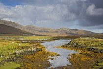 Sunny tranquil view craggy landscape and stream, Loch Aineort, South Uist, Outer Hebrides — Stock Photo