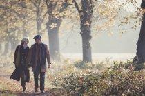 Coppia anziana che si tiene per mano passeggiando nel soleggiato parco autunnale — Foto stock
