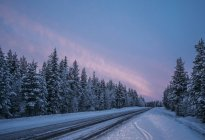 Remote winter road through snow covered forest trees, Lapland, Finland — Stock Photo