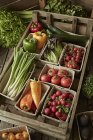 Натюрморт свіжі, органічні, здорових овочеві врожаю різноманітність у дерев'яних ящиків — стокове фото