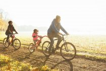 Young family bike riding on path in sunny autumn park — Stock Photo
