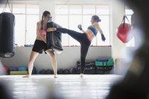 Zwei Frauen Kickboxen mit Pad im Fitness-Studio — Stockfoto