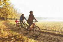 Playful young family bike riding on path in sunny autumn park — Stock Photo