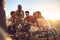 Sorridente giovani amici godendo pic-nic sulla spiaggia estiva soleggiata — Foto stock