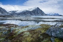 Moss covered rocks among remote fjord and mountains, Langraget, Lofoten, Norway — Stock Photo
