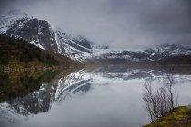 Відображення міцний, snowy гори у воді, Storvatnet, Лофотені, Норвегія — стокове фото