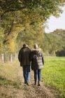 Заднього вигляду Літня кавказька пара ходити разом в Осінній Парк — стокове фото