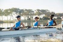 Equipe de remo feminino remo scull no lago ensolarado — Fotografia de Stock