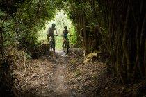 Пара горных велосипедов по тропе в лесу — стоковое фото