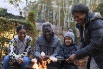Grandparents and grandchildren roasting marshmallows over campfire — Stock Photo