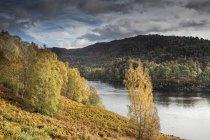 Paisagem tranquila de glen com árvores de outono e rio, Glen Affric, Escócia — Fotografia de Stock