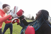 Enthusiastic friends boxing in green park — Stock Photo