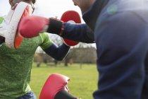 Men boxing in park in green park, closeup — Stock Photo