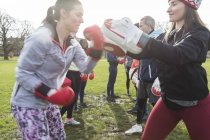 Young women boxing in green park — Stock Photo