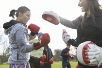 Determined women boxing in green park — Stock Photo