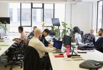 Программисты, работающие в офисе открытого плана — стоковое фото
