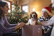 Счастливая семья с собакой в рождественской подарочной коробке — стоковое фото