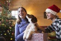 Retrato irmão feliz e irmã com cão na caixa de presente de Natal — Fotografia de Stock