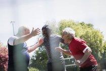 Счастливые друзья-пенсионеры празднуют в солнечном парке — стоковое фото