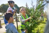 Mutter und Kinder pflanzen freiwillig Baum im sonnigen Park — Stockfoto