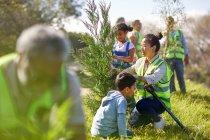 Жінки і діти добровольців посадка дерево в сонячному парку — стокове фото