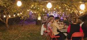 Friends enjoying dinner garden party under trees with fairy lights — Stock Photo