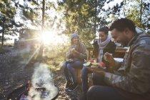 Heureux amis manger au camping ensoleillé dans les bois — Photo de stock