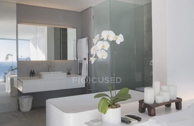 Modern, luxury home showcase interior bathroom — Stock Photo