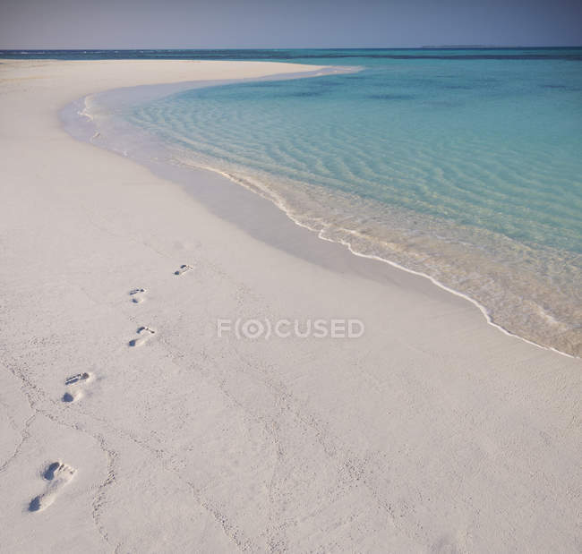 Footprints in sand on tropical beach — Stock Photo