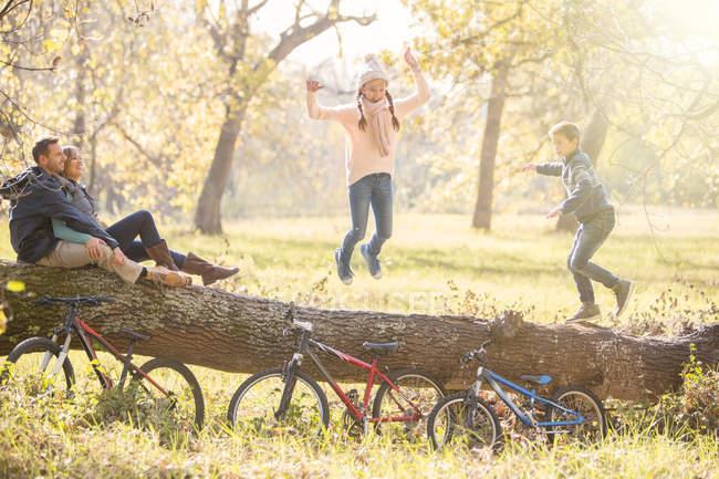 Семья играет на упавшем бревне в осеннем лесу — стоковое фото