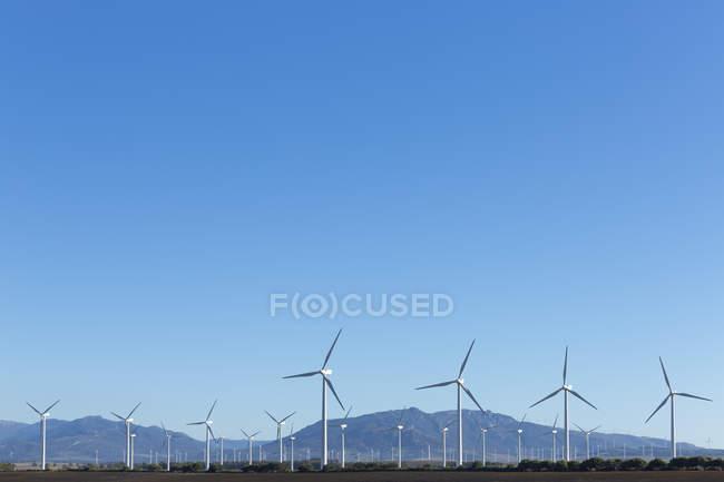 Wind farm under clear blue sky — Stock Photo